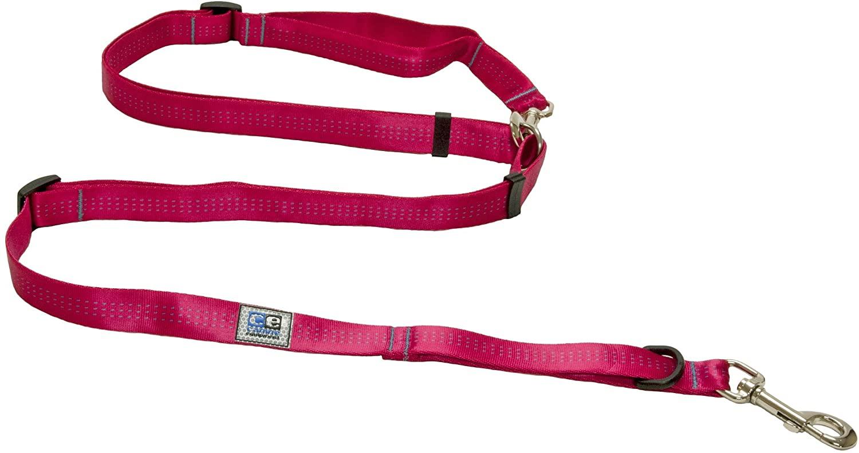 RC Pet Products Beyond Control Dog Leash, Rasberry