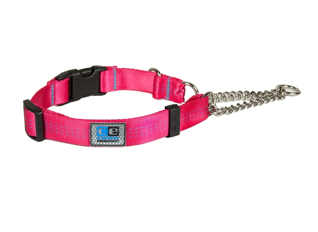 RC Pet Products Canine Equipment Technika Martingale Dog Collar, Raspberry, X-Large