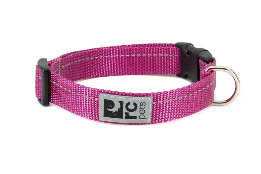 RC Pet Products Primary Clip Dog Collar, Mulberry, XX-Small