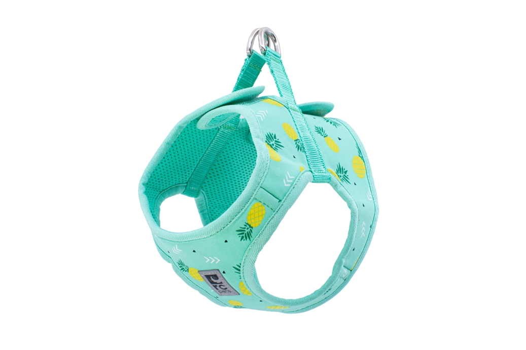 RC Pet Products Step In Cirque Dog Harness, Pineapple Parade, X-Small