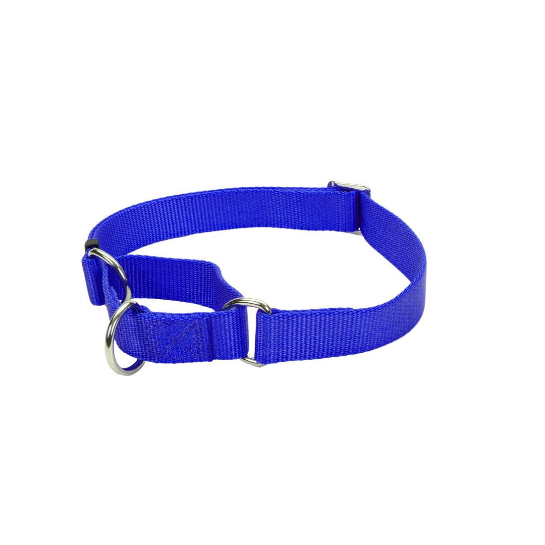 No! Slip Martingale Adjustable Dog Collar, Blue, 5/8-in x 10-14-in