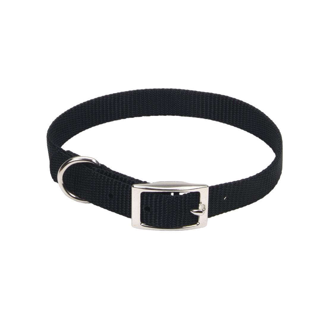 Coastal Single-Ply Dog Collar, Black, 5/8-in x 12-in