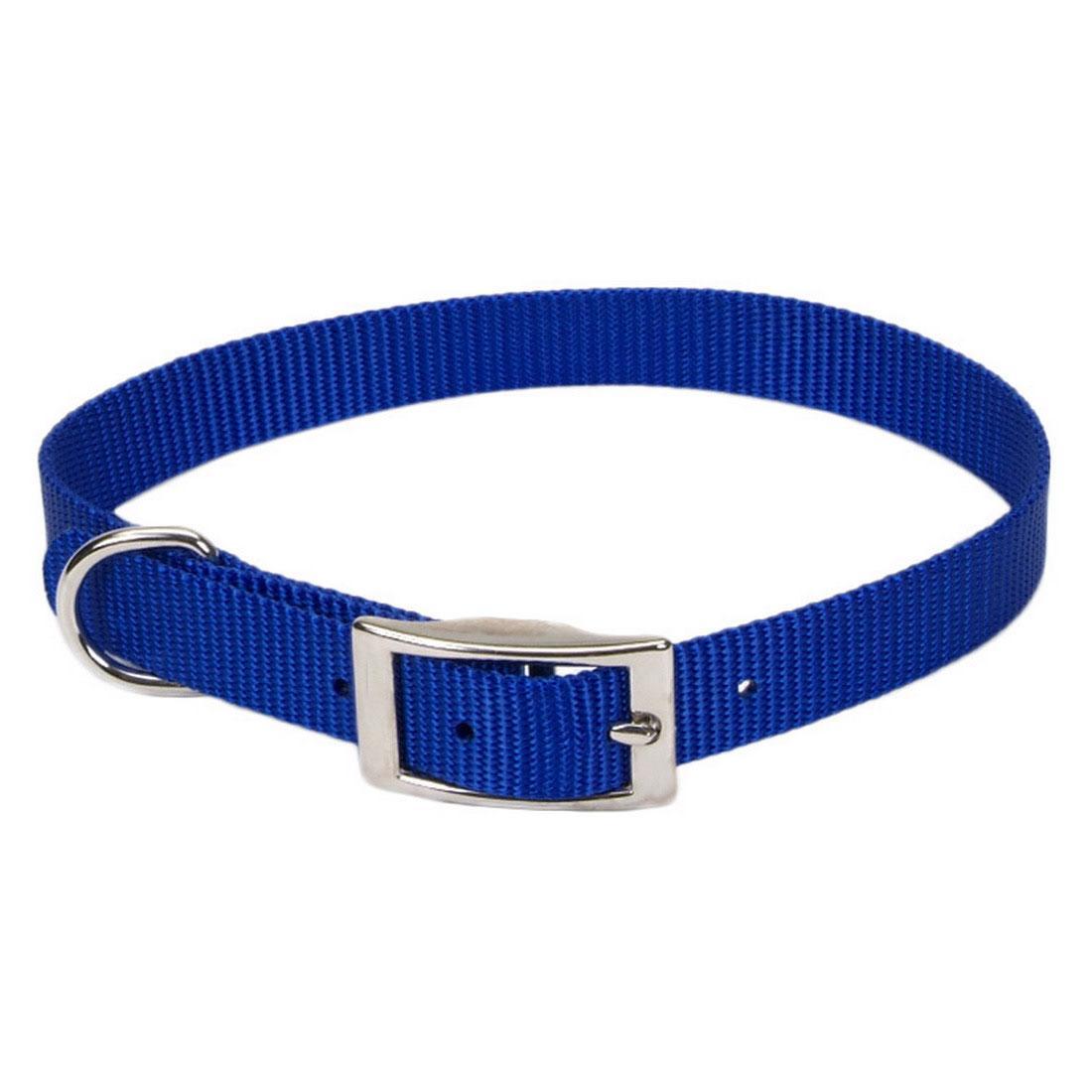 Coastal Single-Ply Dog Collar, Blue, 5/8-in x 12-in