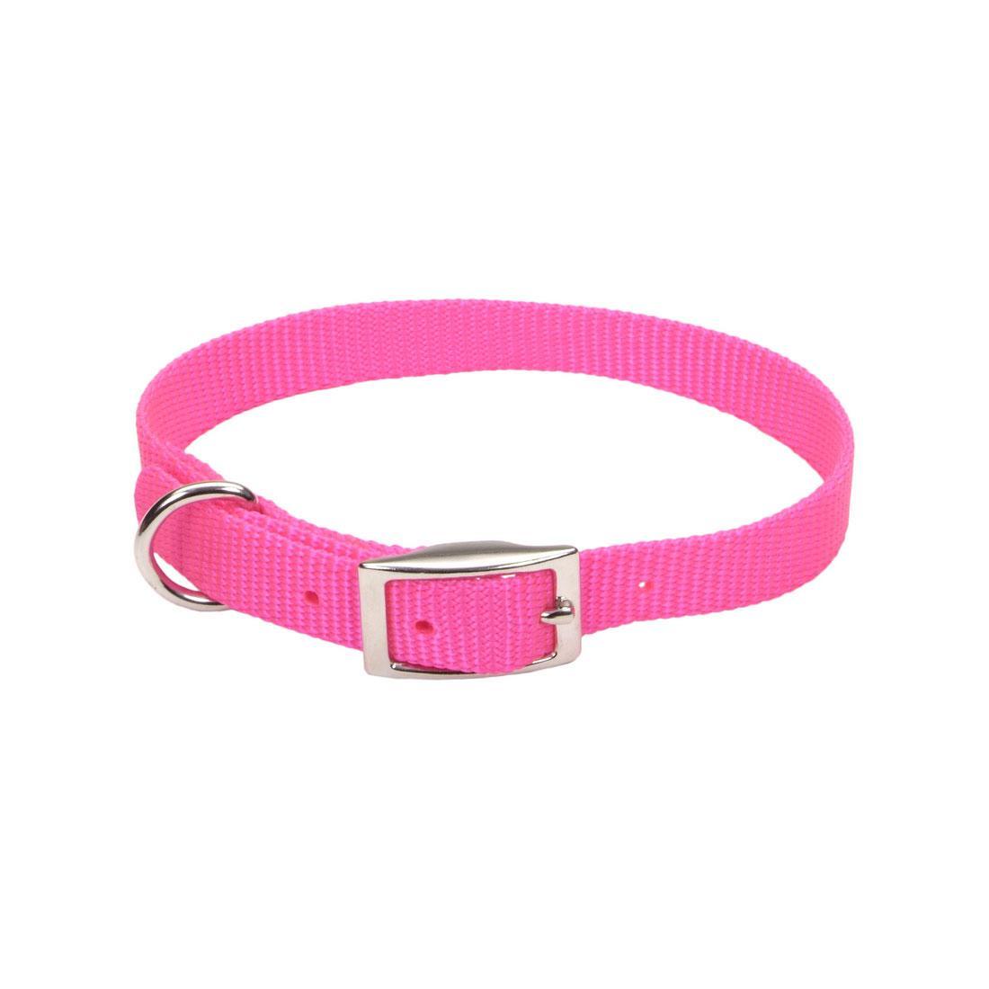 Coastal Single-Ply Dog Collar, Neon Pink, 5/8-in x 16-in