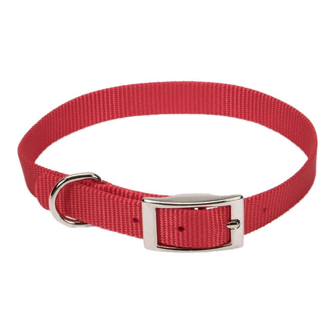 Coastal Single-Ply Dog Collar, Red, 5/8-in x 12-in