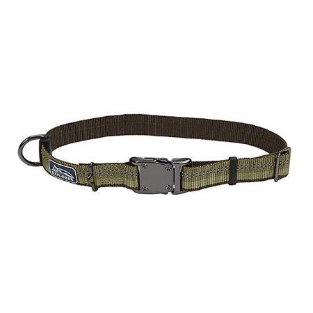 K9 Explorer Reflective Adjustable Dog Collar, Green Image