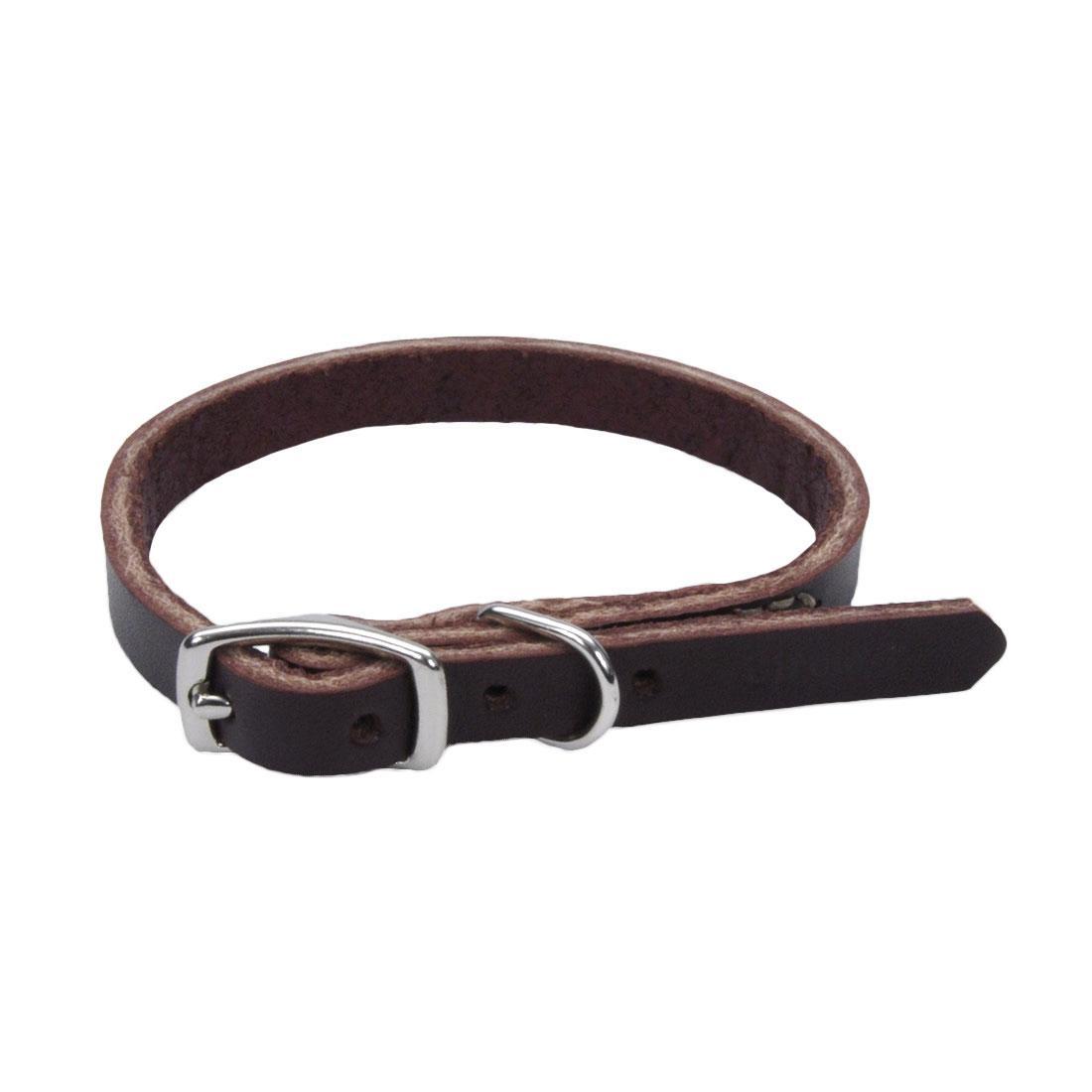 Circle T Latigo Leather Town Dog Collar, 3/8-in x 12-in