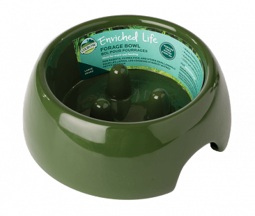 Oxbow Enriched Life Forage Small Pet Bowl Image