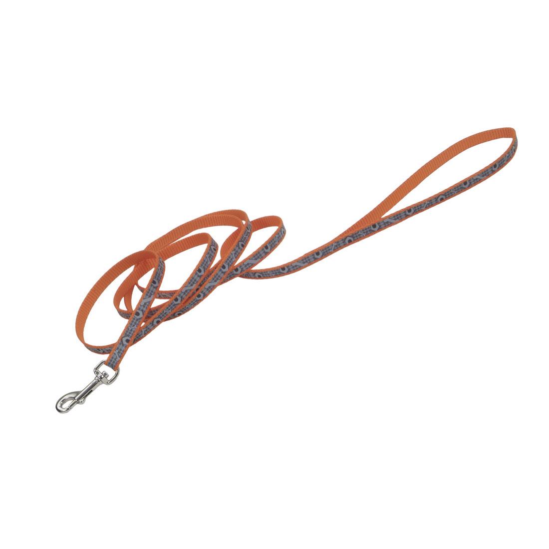 Lazer Brite Reflective Dog Leash, Orange Dog Houses Image