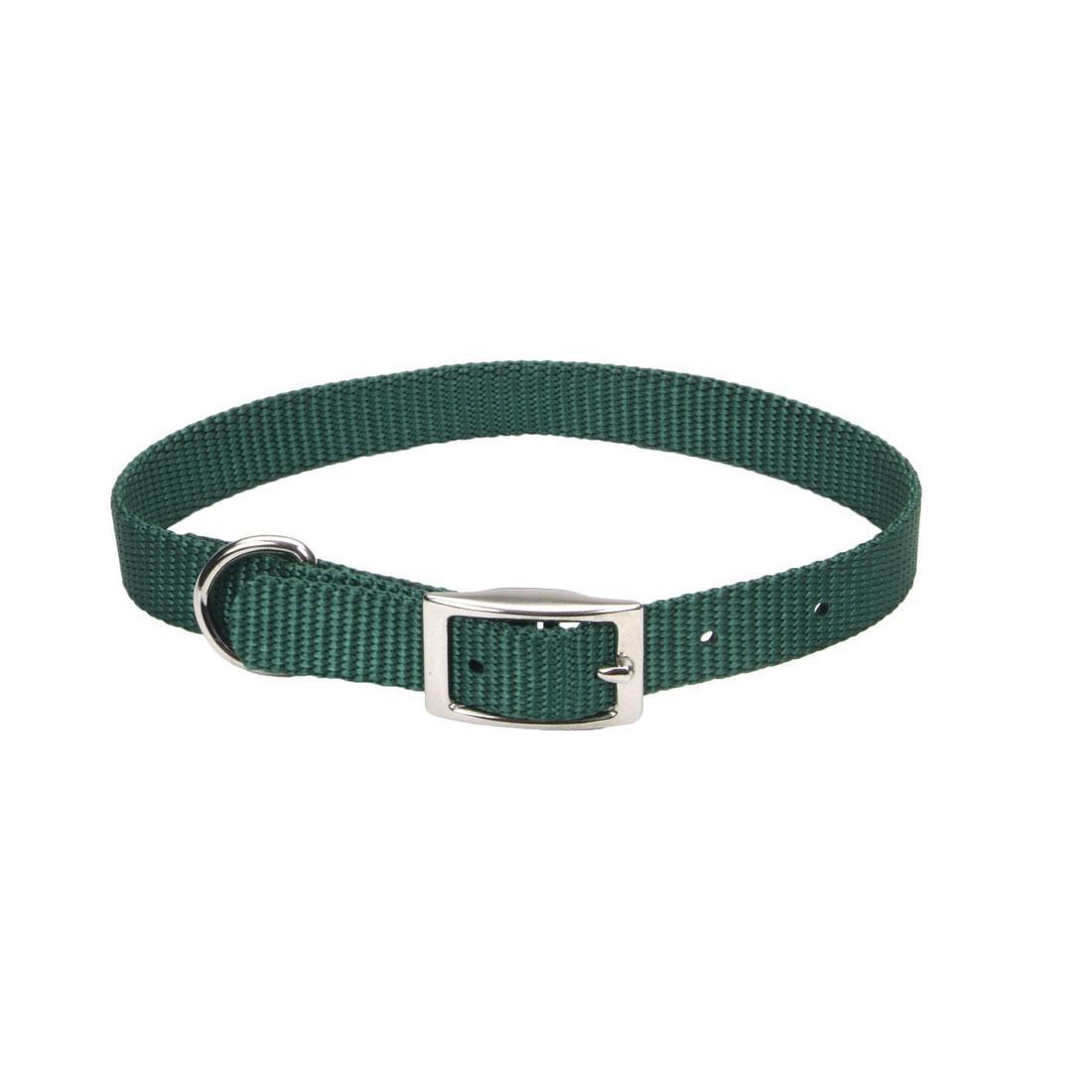 Coastal Single-Ply Dog Collar, Hunter, 5/8-in x 14-in