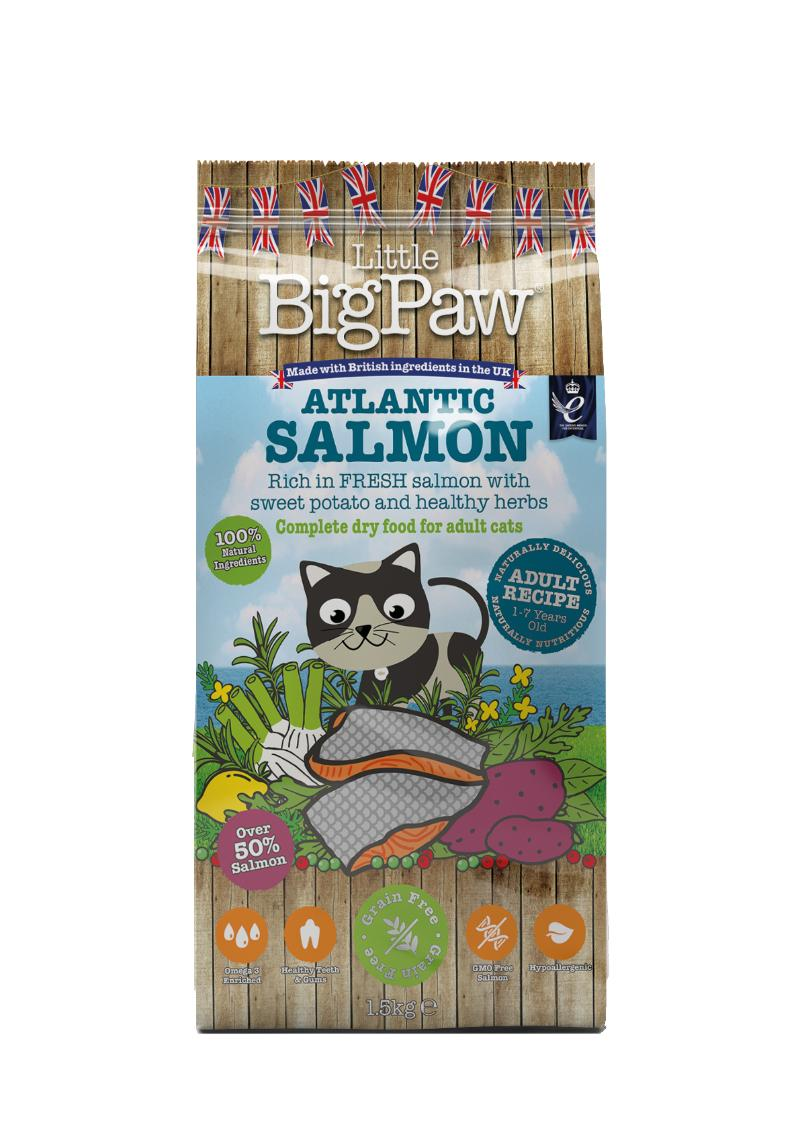 Little BigPaw Atlantic Salmon Adult Dry Cat Food, 1.5-kg