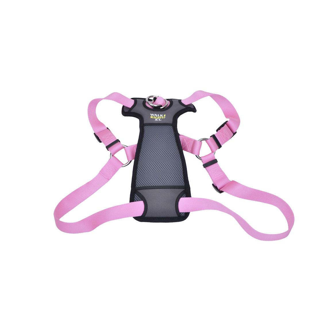 Coastal Walk Right! Front-Connect No-Pull Padded Dog Harness, Pink Bright, 27-43-in