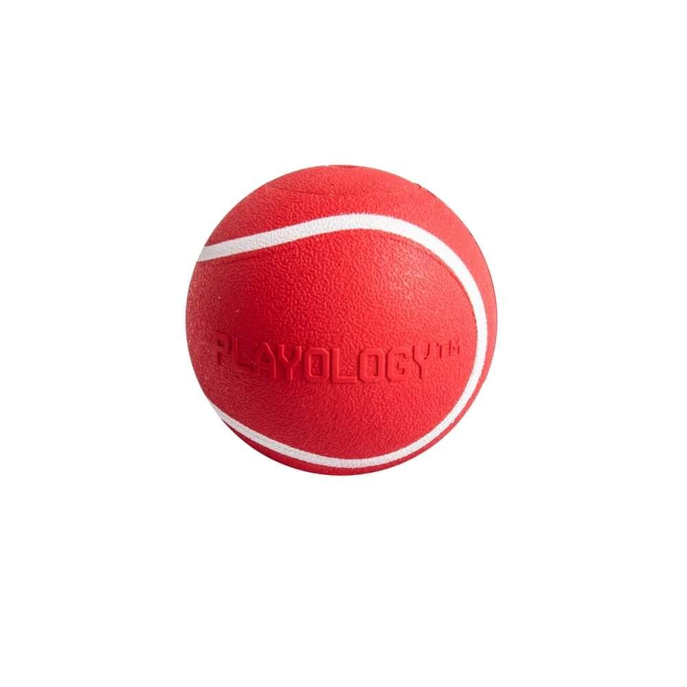 Playology Squeaky Chew Ball Beef Scented Dog Toy, Small