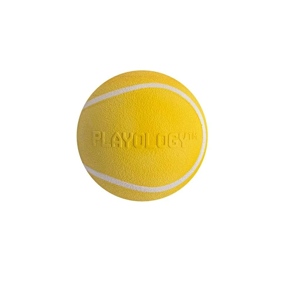 Playology Squeaky Chew Ball Chicken Scented Dog Toy, Small