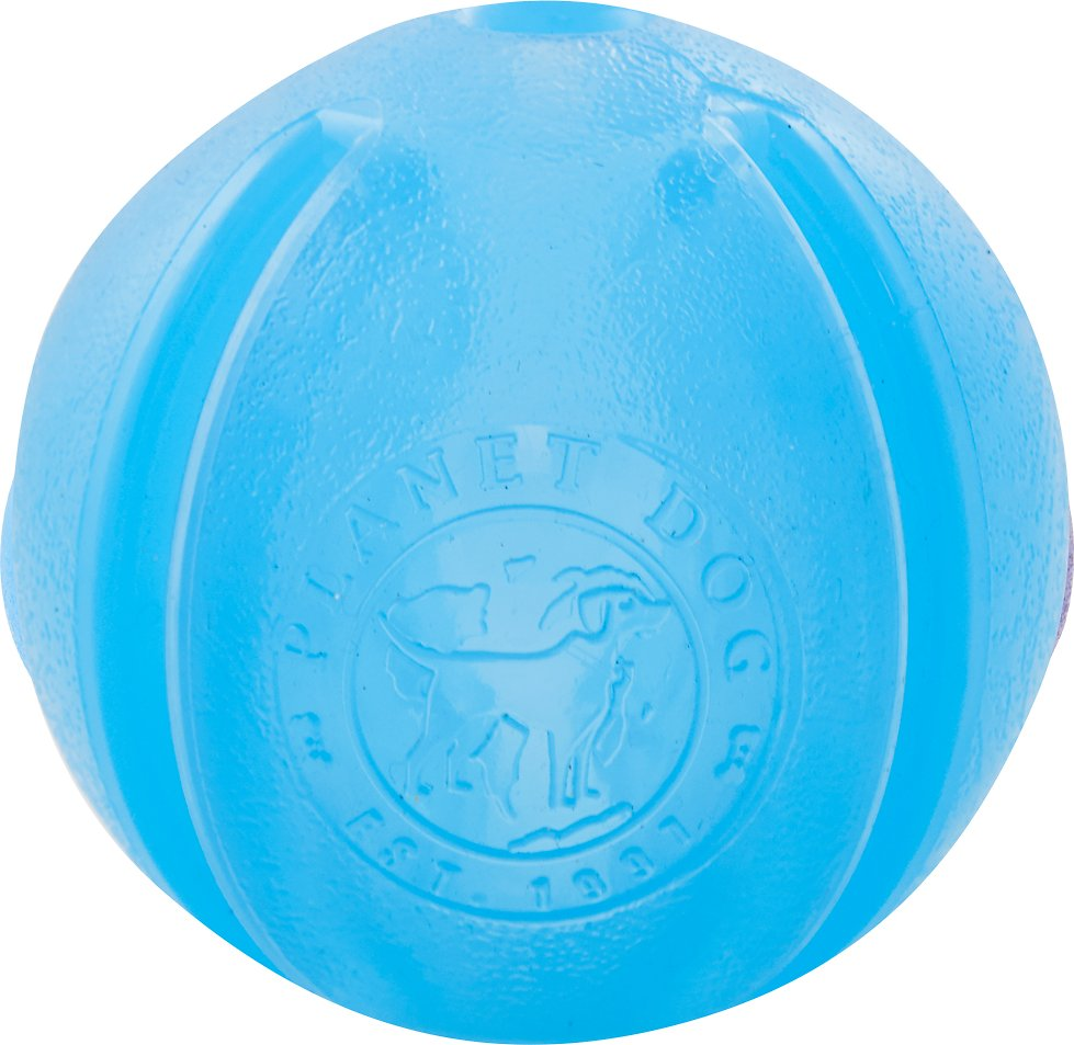 Planet Dog Orbee-Tuff GuRu Interactive Dog Toy, Blue