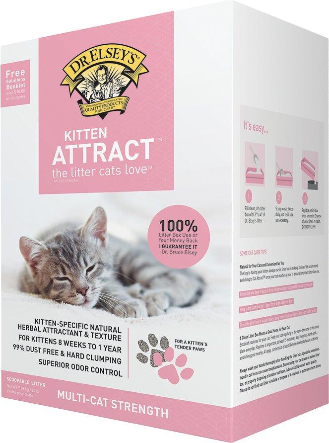 Dr. Elsey's Precious Cat Kitten Attract Training Cat Litter, 20-lb box