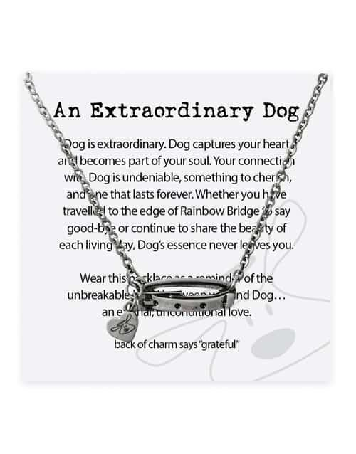 Dog Is Good An Extraordinary Dog Necklace Jewelry