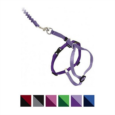 PetSafe Come With Me Kitty Harness & Bungee Cat Leash, Lilac/Deep Purple, Medium