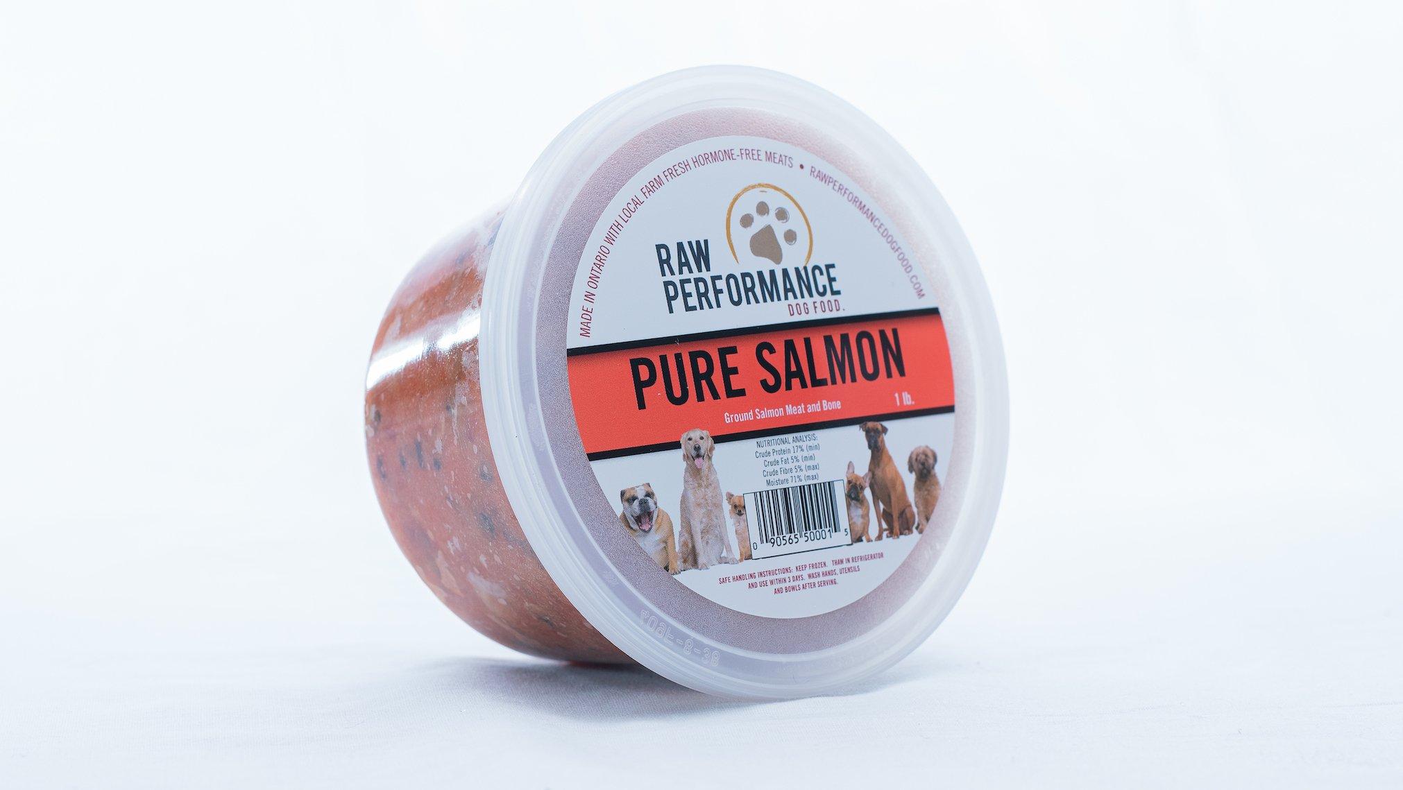 Raw Performance Pure Salmon Dog Food, 1-lb