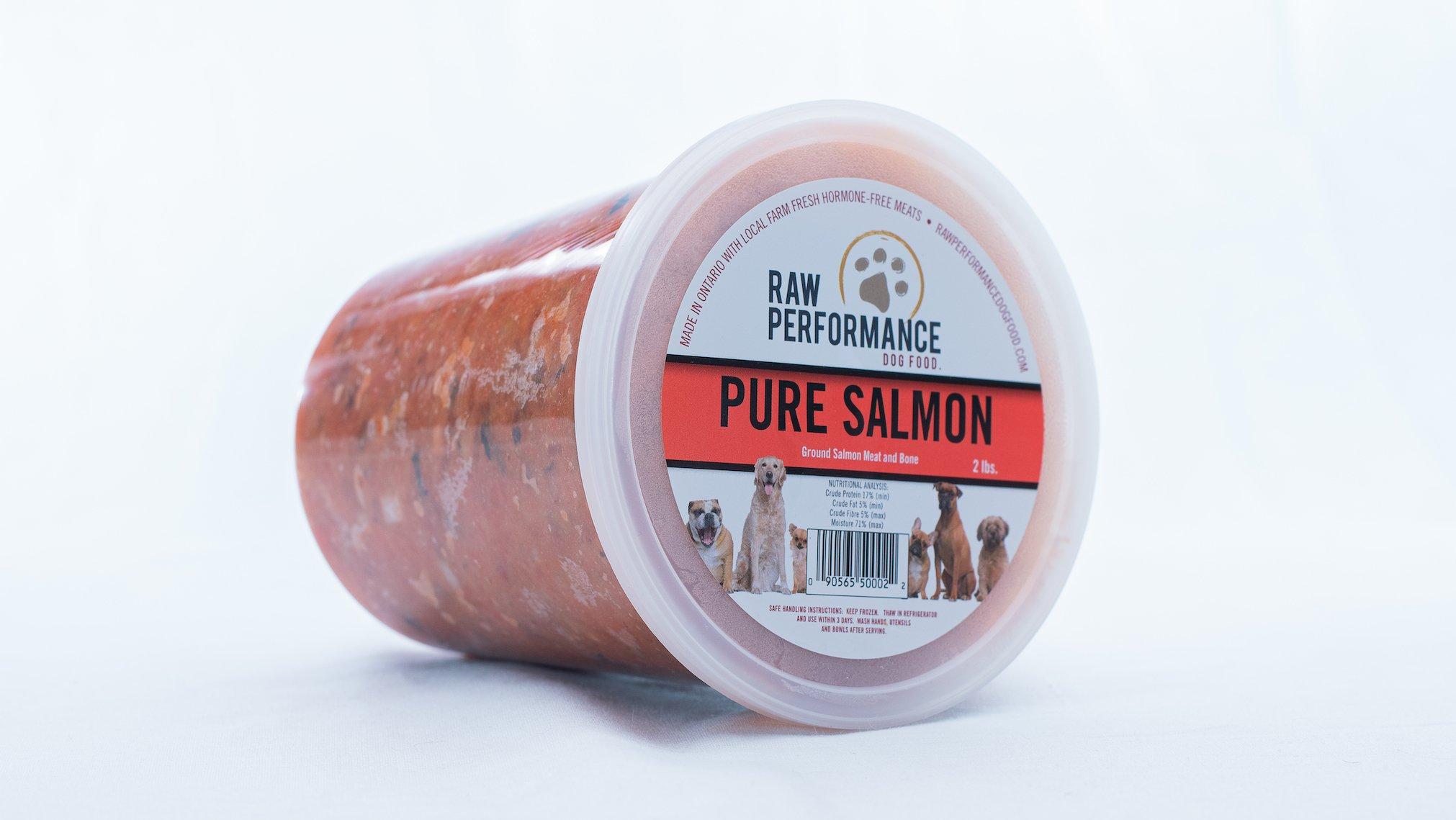 Raw Performance Pure Salmon Dog Food, 2-lb