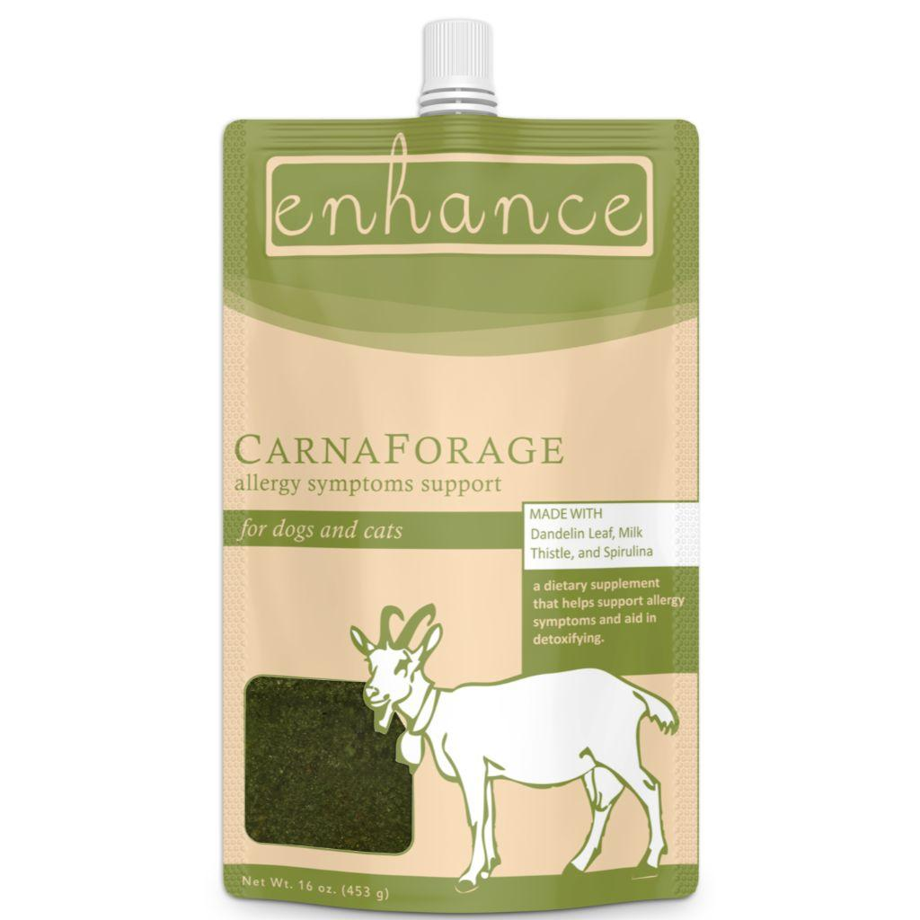 Steve's Enhance CarnaForage Frozen Raw Goat Milk Yogurt for Dogs & Cats, 16-oz