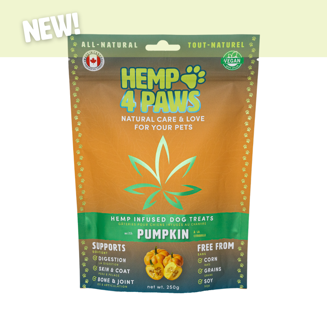H 4 Paws H-Infused Dog Treats, Pumpkin