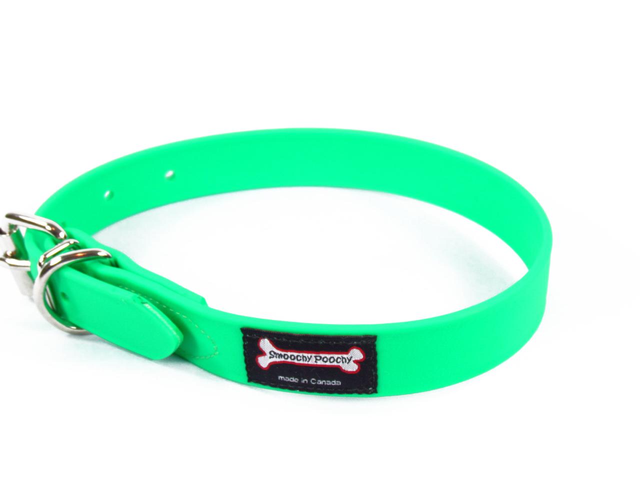 Smoochy Poochy Polyvinyl Waterproof Dog Collar, Apple, Large