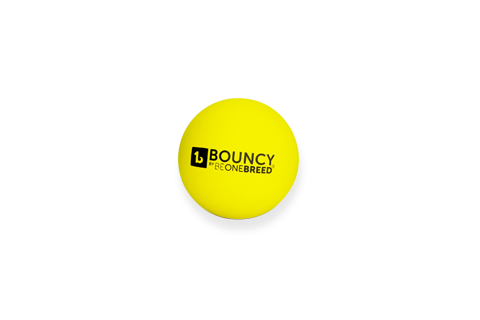 BeOneBreed Bouncy Ball Dog Toy, 3-in