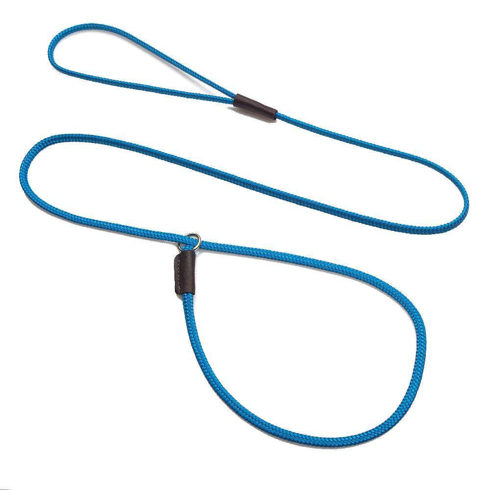 Mendota Pet Show Slip Dog Leash, Blue, 1/8-in x 54-in