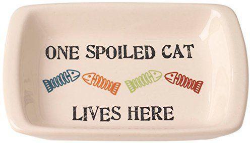PetRageous One Spoiled Pet Rectangular Cat Saucer Bowl, 2.5-oz