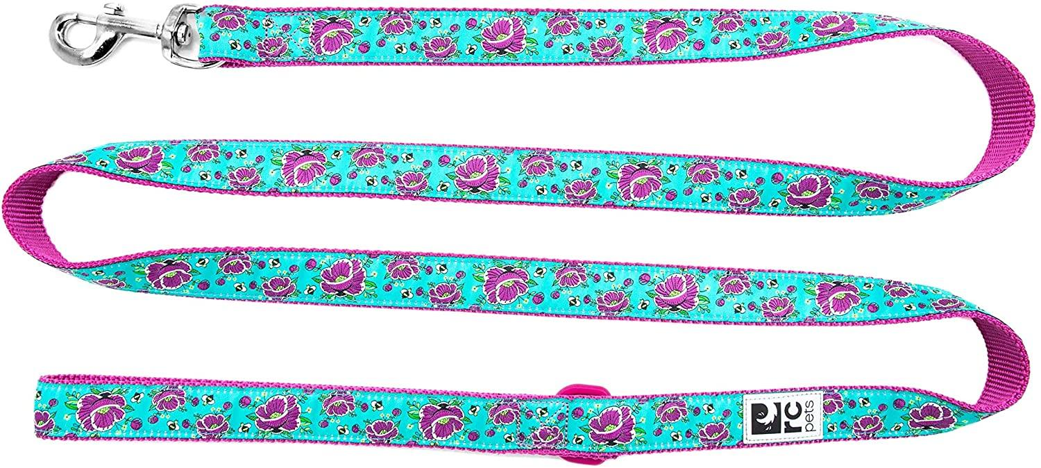 RC Pet Products Dog Leash, All The Buzz, 1-in x 6-ft
