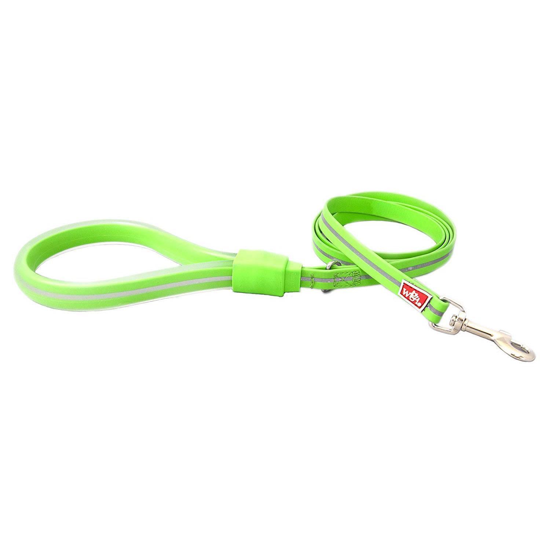 Wigzi Weatherproof Dog Leash, Green, 6-ft