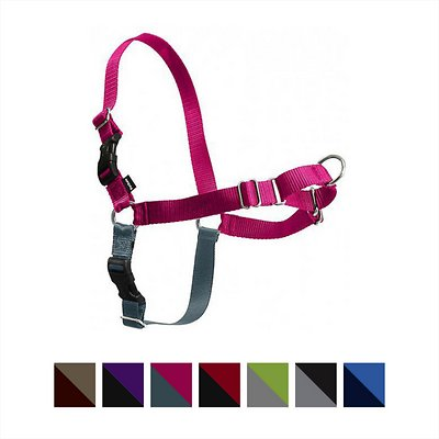 PetSafe Easy Walk Dog Harness, Raspberry/Gray, Large