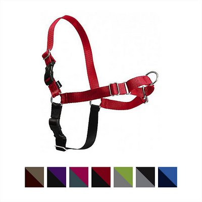 PetSafe Easy Walk Dog Harness, Red/Black, Large
