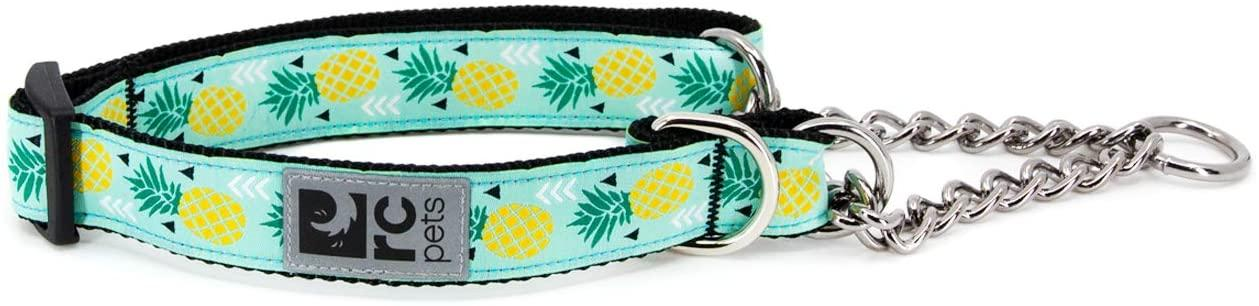 RC Pet Products Training Dog Collar, Pineapple Parade, X-Small