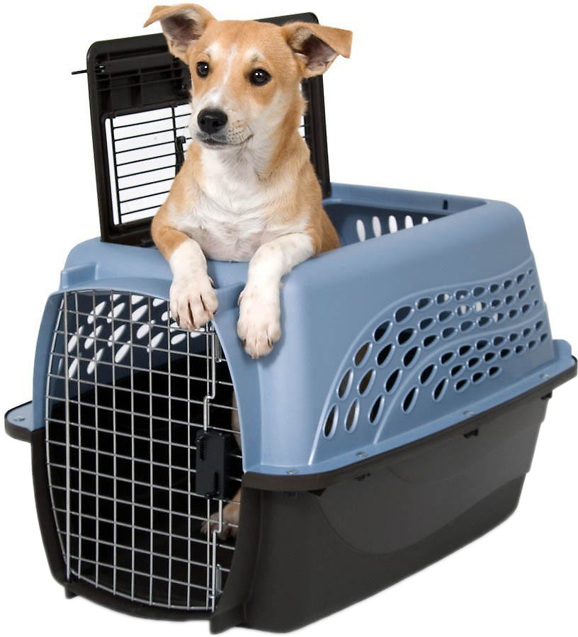Petmate Two Door Top Load Pet Kennel, Medium Blue (Weights: 5.8pounds, Color: Medium Blue) Image