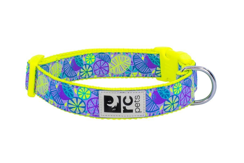 RC Pet Products Clip Dog Collar, Citrus, X-Small