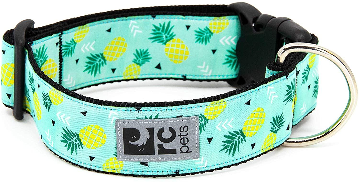 RC Pet Products Wide Clip Dog Collar, Pineapple, Large