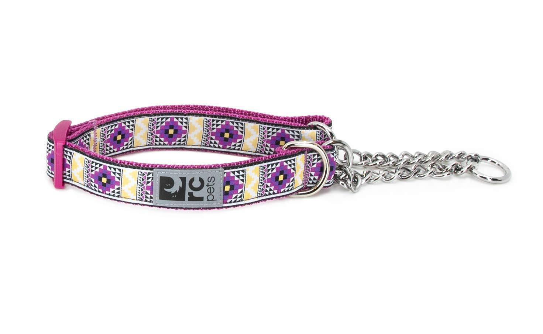 RC Pet Products Training Dog Collar, Casablanca, X-Small