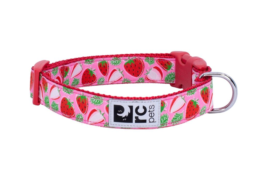 RC Pet Products Clip Dog Collar, Strawberries, Large