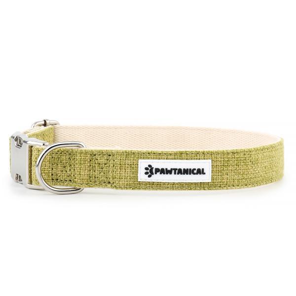 Pawtanical Dog Collar, Grass Green, 1-in x 14-20-in