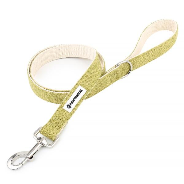 Pawtanical Dog Leash, Grass Green, 1-in x 5-ft
