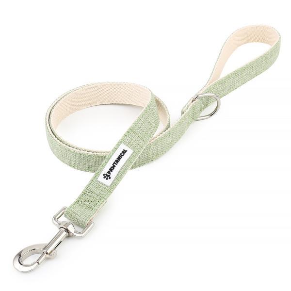 Pawtanical Dog Leash, Light Green Image