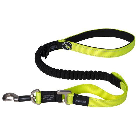Rogz Control Shock Absorbing Bungee Dog Lead, Yellow, 1-in x 46-in