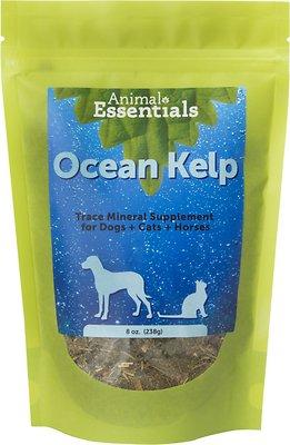 Animal Essentials Ocean Kelp Dog & Cat Supplement, 8-oz bag