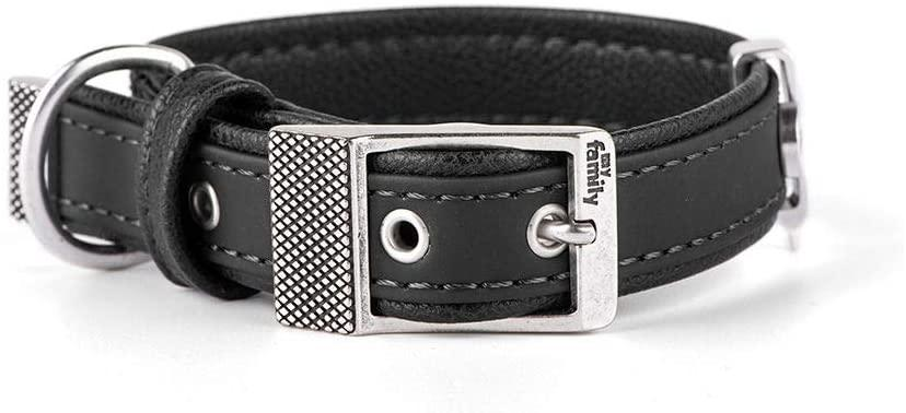 MyFamily Bilbao Leatherette Dog Collar, Black, 10.5-12-in