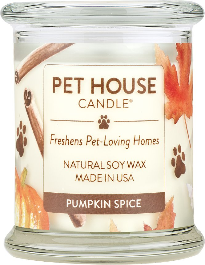 One Fur All Pet House Pumpkin Spice Natural Soy Candle, 8.5-oz jar