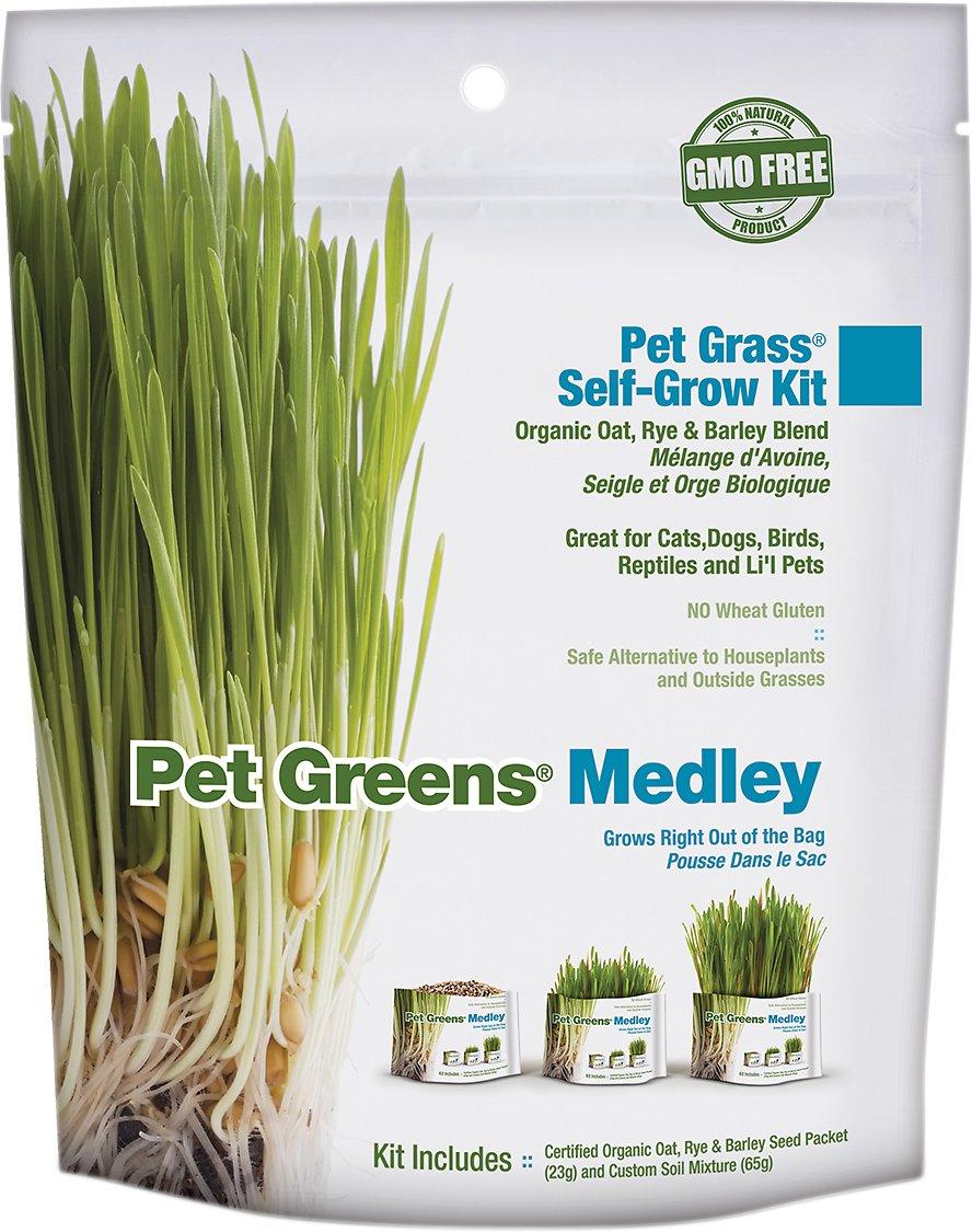 Pet Greens Self Grow Medley Pet Grass, 3-oz bag