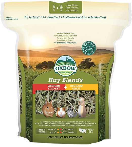 Oxbow Western Timothy and Orchard Hay Small Animal Food Image