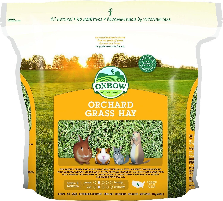 Oxbow Orchard Grass Hay Small Animal Food Image